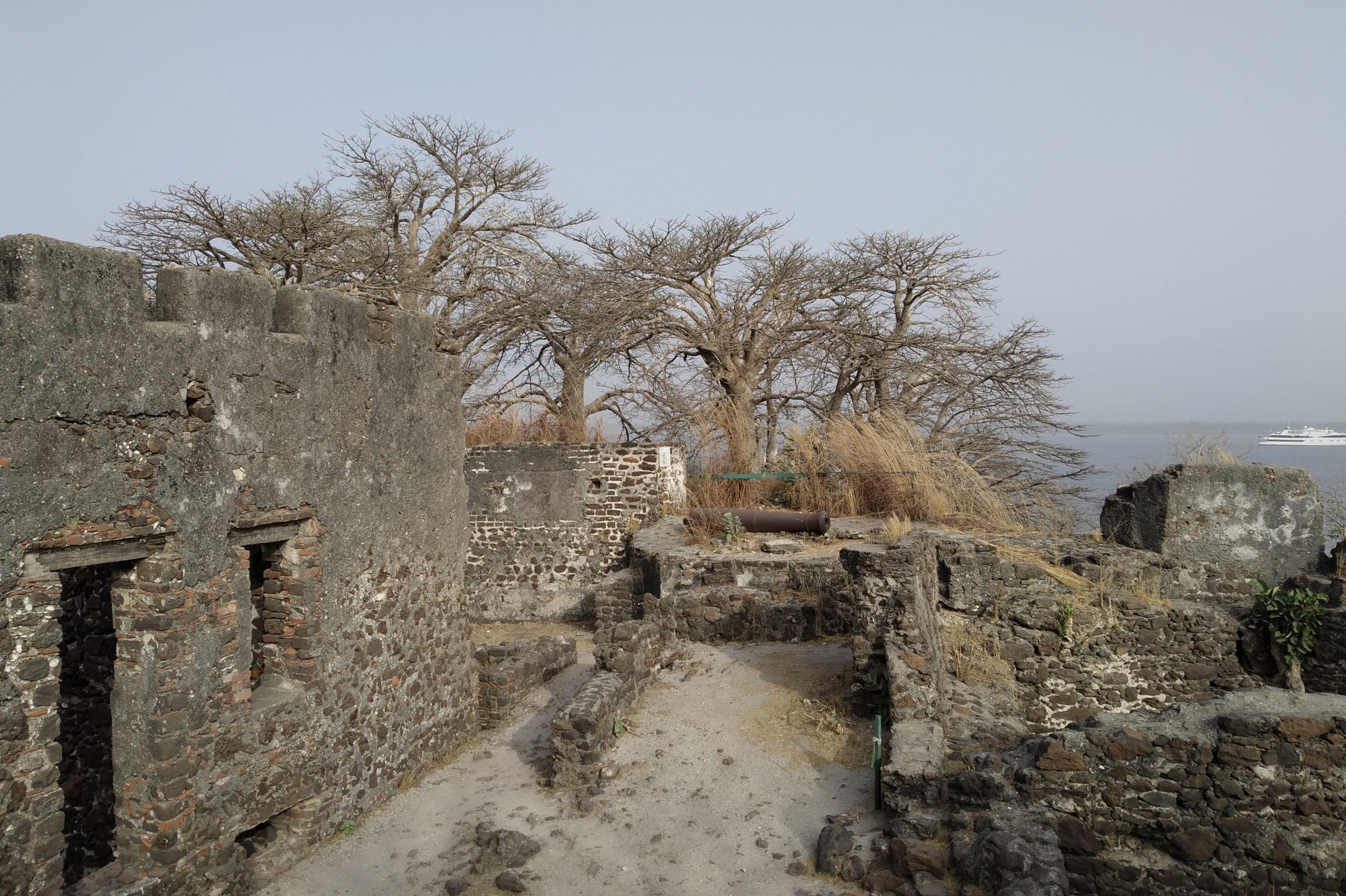 クンタ・キンテ島の画像 p1_5
